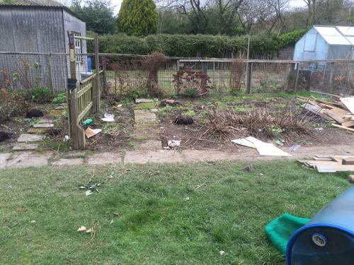 House/garden metal removal