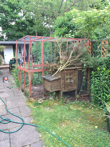 Waste Removal and Dismantling in Cambridge
