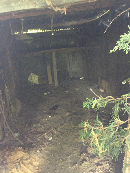 Shed Clearance in Mepal
